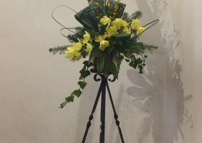 Flowers_23_Feb_20