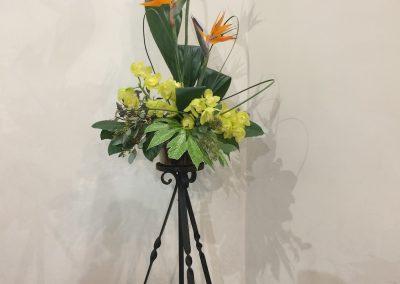 Flowers_26_Jan_20
