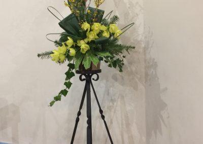 Flowers_9_Feb_20